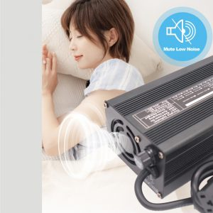 Electric Vehicle Charger 60V 10A (LiFePO4)